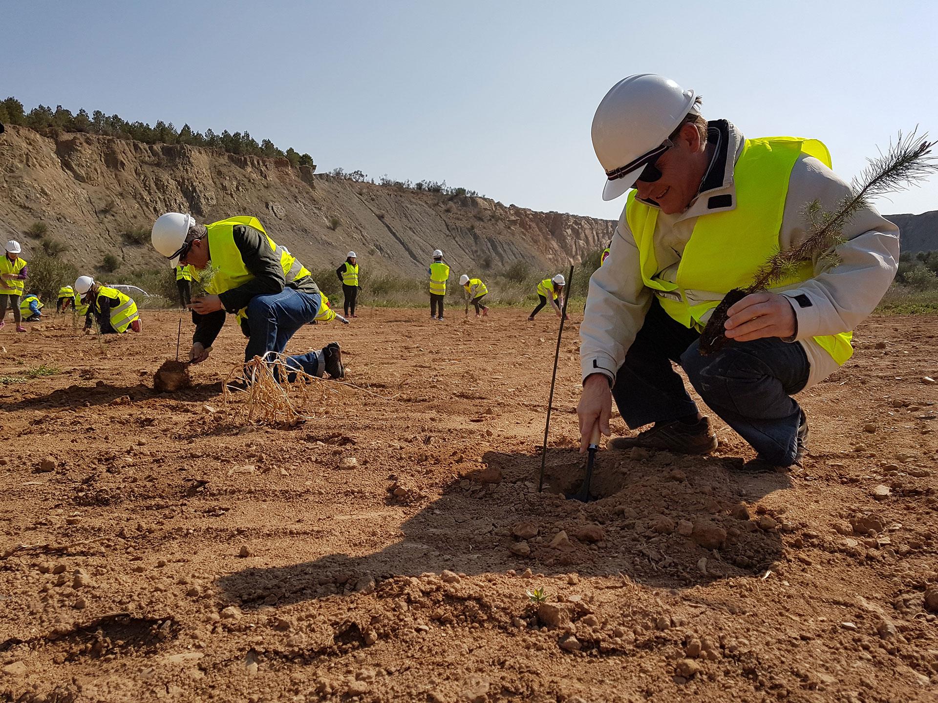 Las Canteras y Minas se comprometen por el clima con una plantación voluntaria de 45.000 árboles, con motivo de la COP25