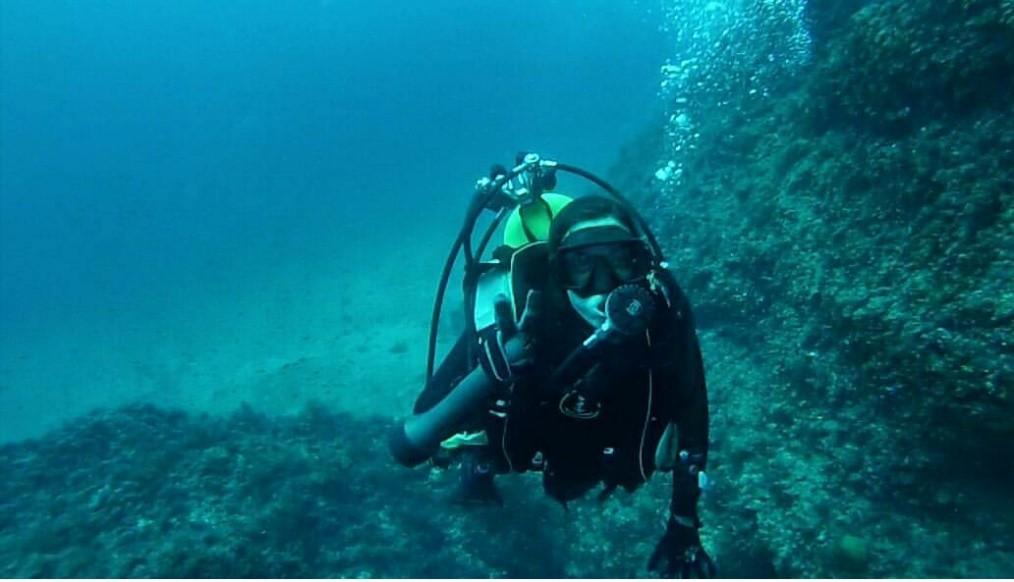 El CTM contrata a una investigadora para el desarrollo del proyecto Coral3D, enfocado a la restauración y conservación de hábitats coralinos de la Región de Murcia