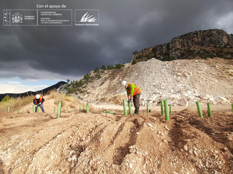 El proyecto Marble & Biodiversity avanza con la revegetación funcional de la cantera el pantano