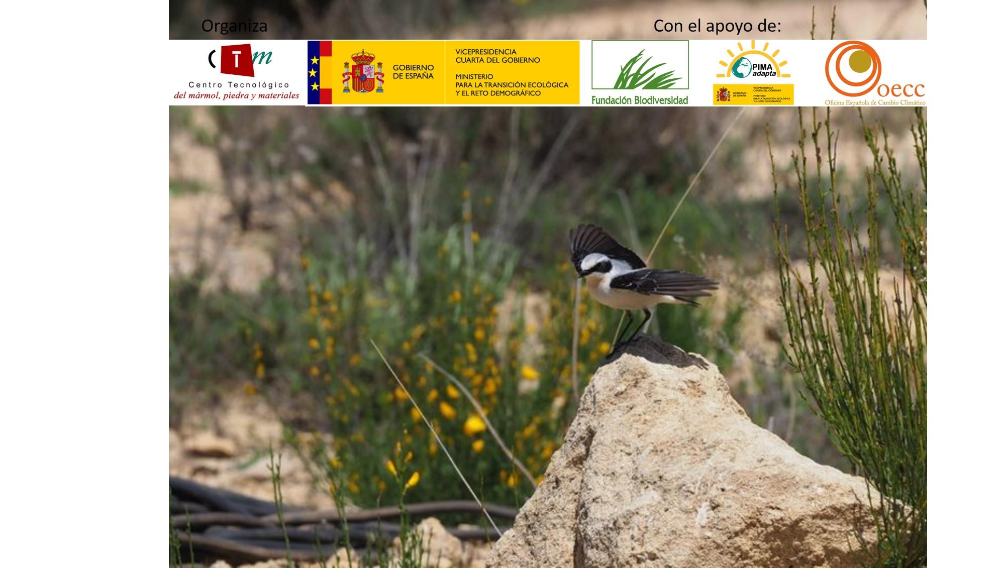 BioReSTONE: Inventario y herramienta de seguimiento de biodiversidad