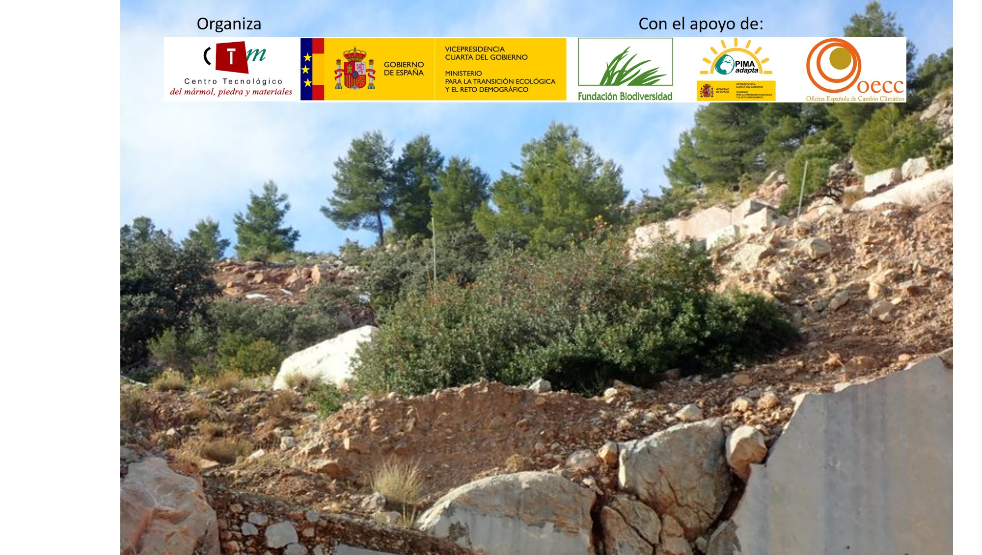 Desarrollamos líneas de trabajo para fomentar la biodiversidad en canteras de mármol dentro del proyecto BioReSTONE